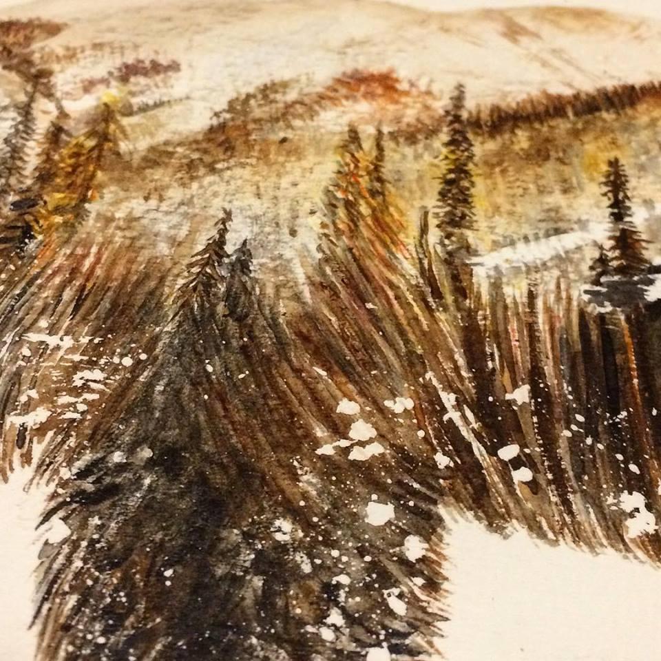 ours noir baribal détail zoom