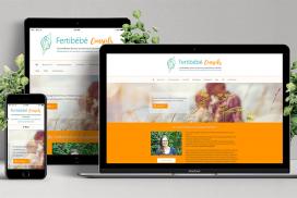 Website Fertibebe Conseils